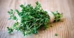 shutterstock-plante-elixir-sante-vin-thym-01